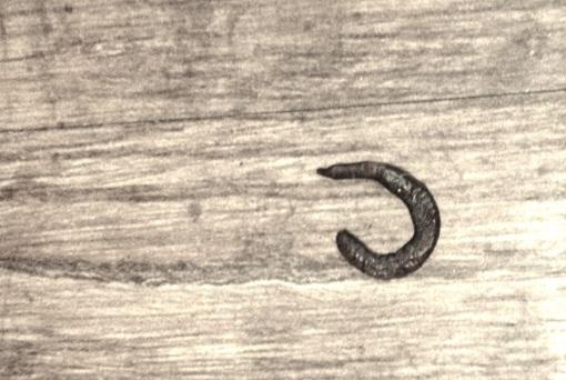 20130411-190559.jpg